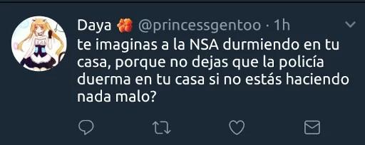 te imaginas a la NSA durmiendo en tu casa, porque no dejas que la policía duerma en tu casa si no estas haciendo nada malo?